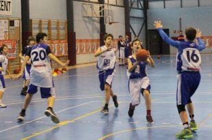 basket alevins ok