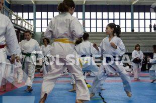 karate ok