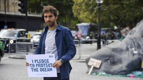Mathieu Flamini medio ambiente